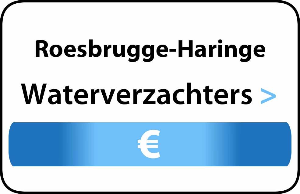 Waterverzachter in de buurt van Roesbrugge-Haringe